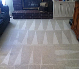 Residential carpet cleaning in Everett, WA.